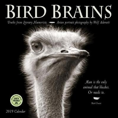 Picture of Bird Brains 2019 Wall Calendar : Truths from Literary Humorists