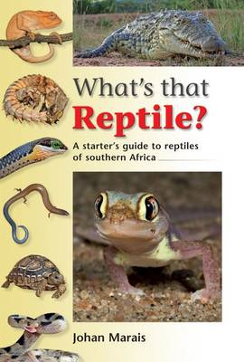 Picture of What's that reptile?