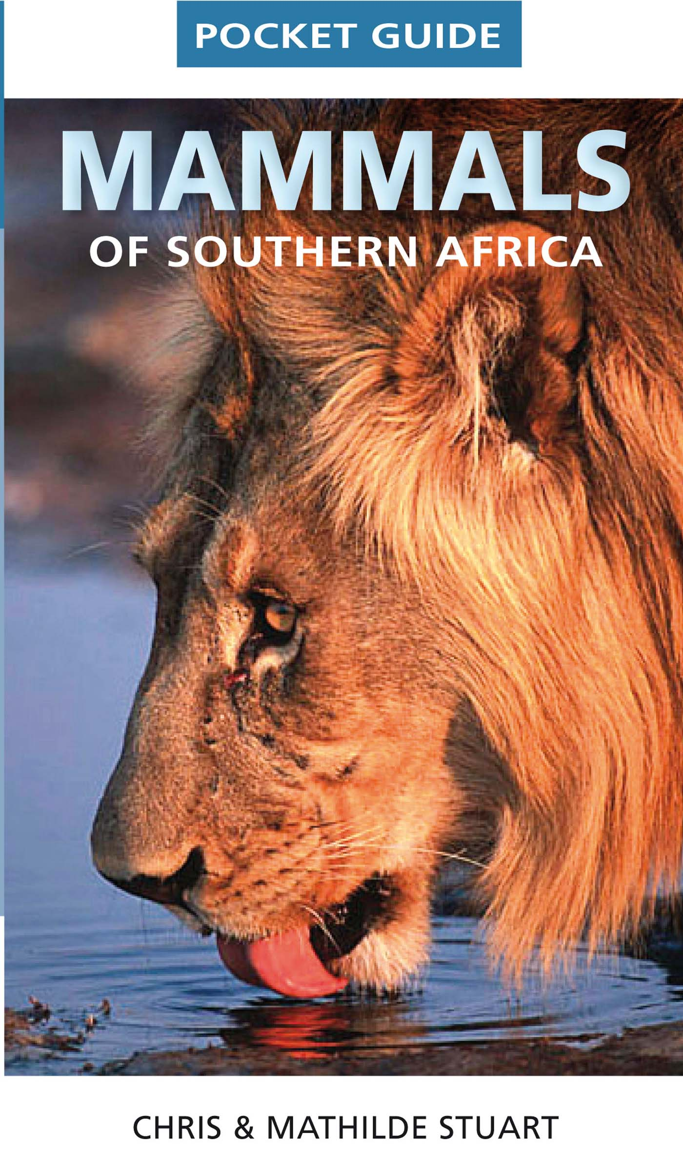 Picture of Pocket guide mammals of Southern Africa
