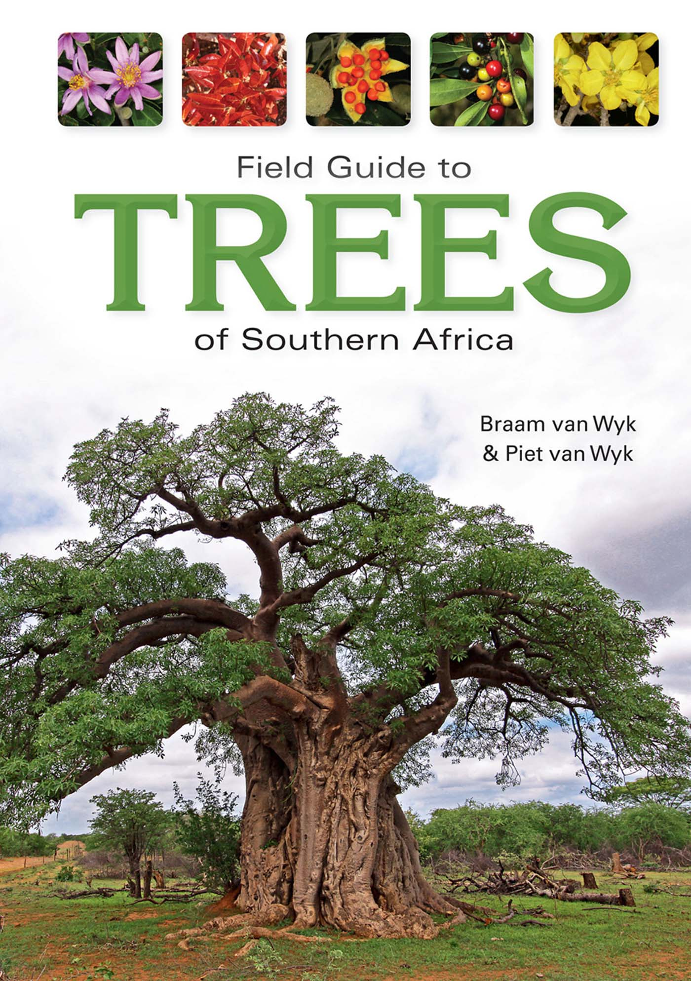 Picture of Field guide to trees of Southern Africa