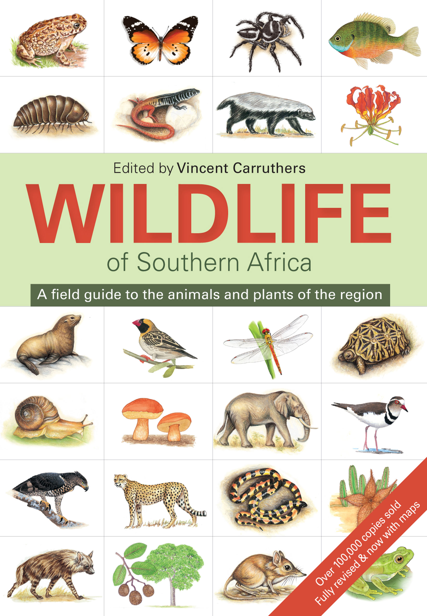 Picture of The wildlife of South Africa