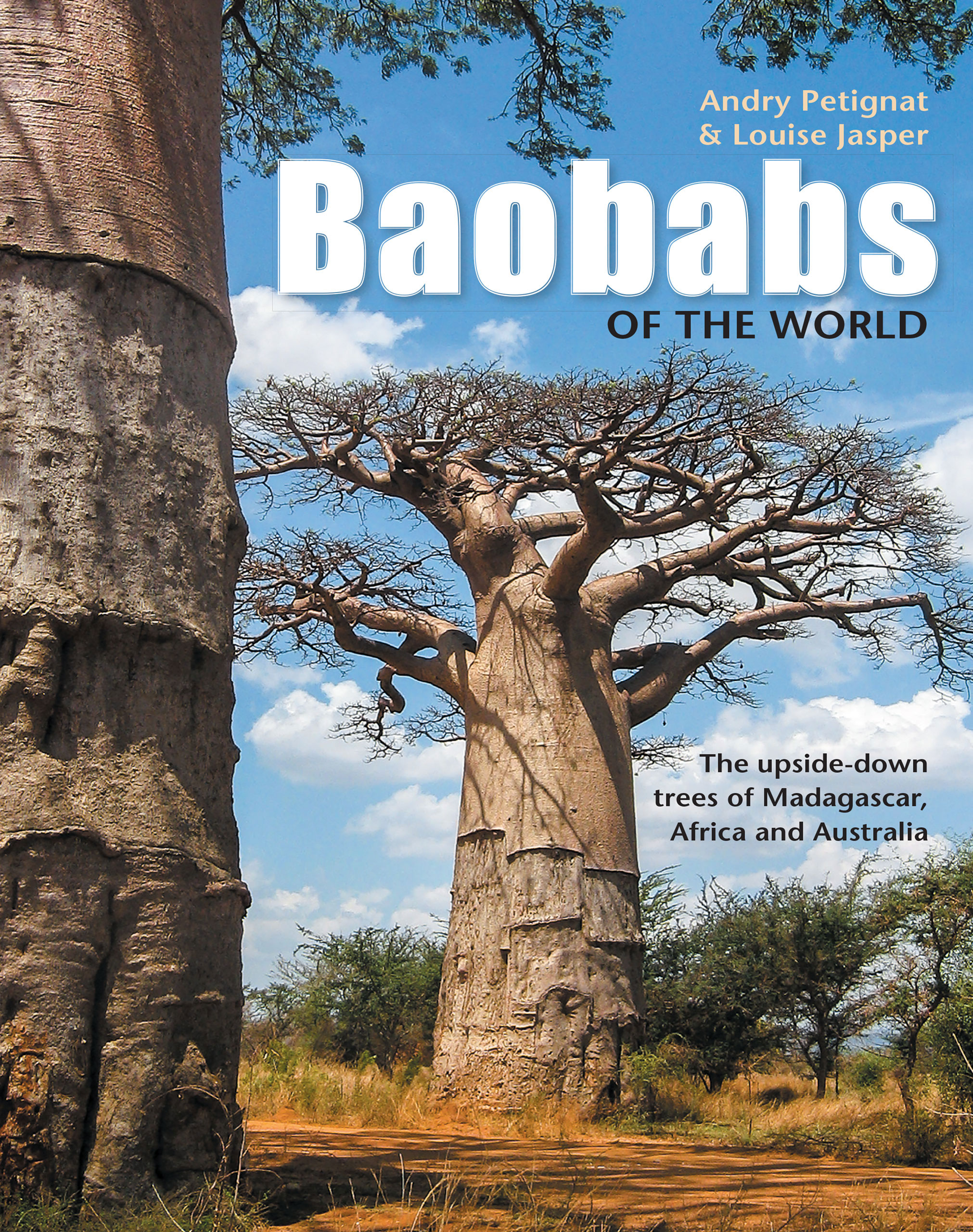 Picture of Baobabs of the world : The upside-down trees of Madagascar, Africa and Australia