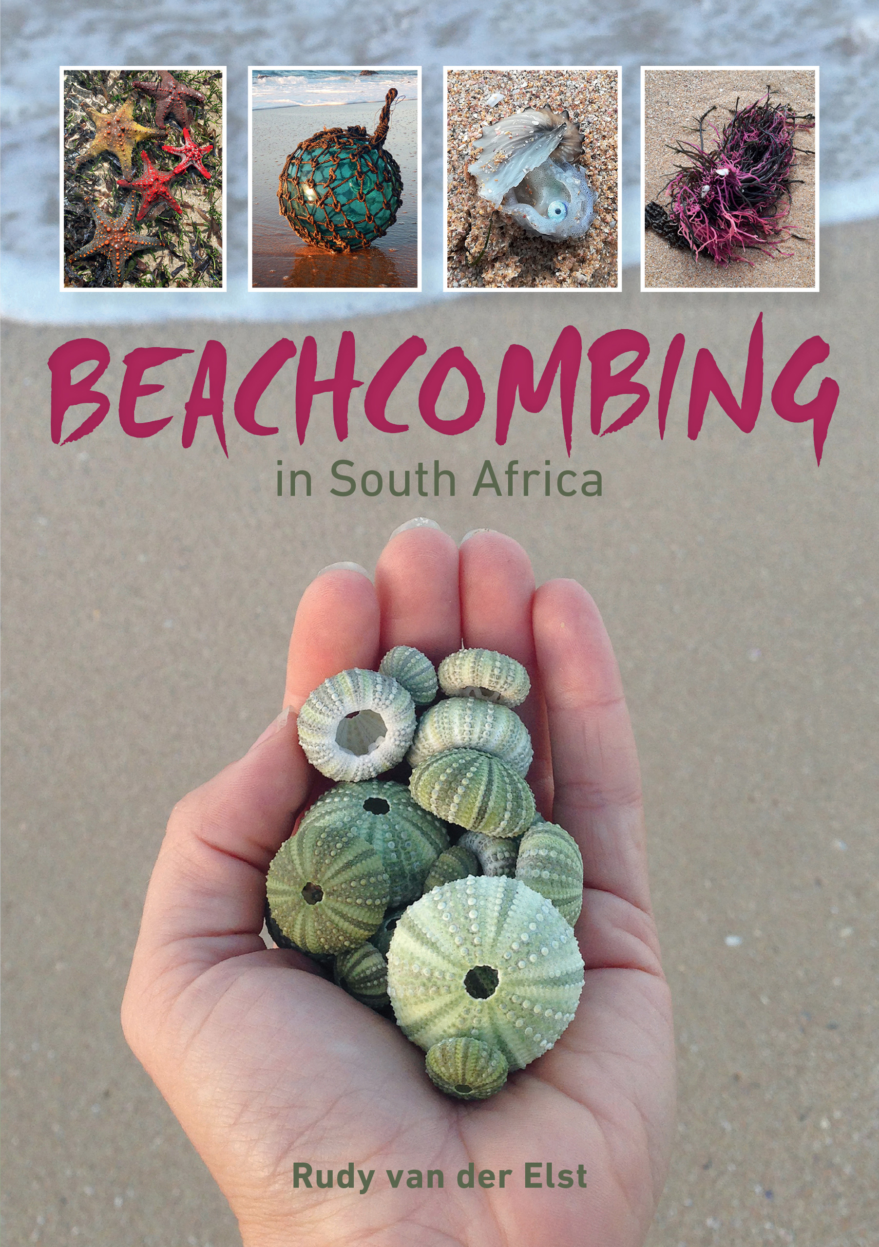 Picture of Beachcombing in South Africa