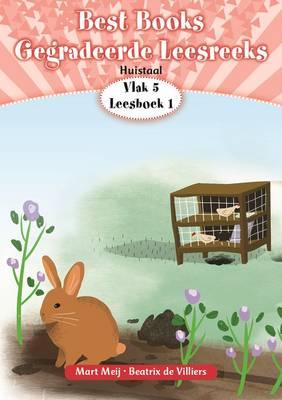 Picture of BestBooksgegradeerdeleesreeks: Vlak1Boek1: Gr 2: Leesboek : Huistaal