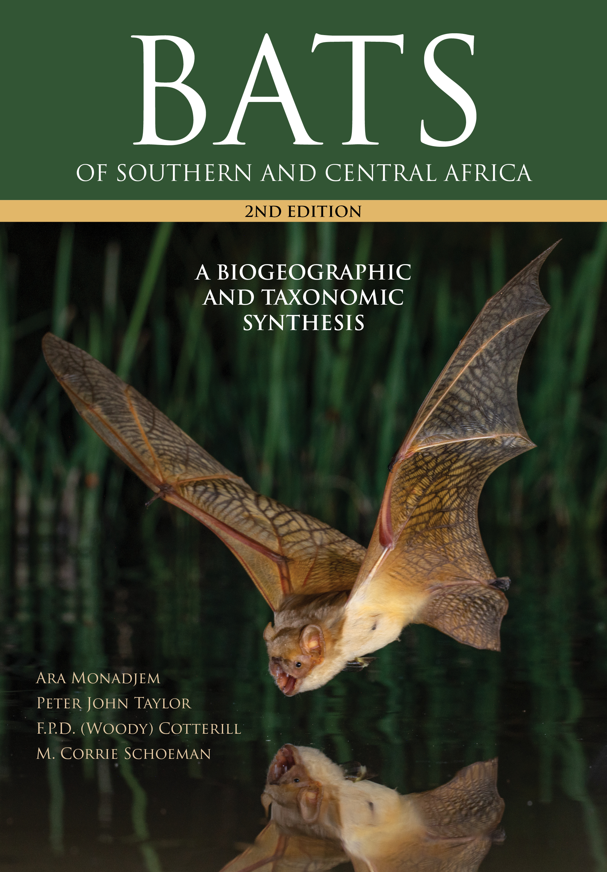 Picture of Bats of Southern and Central Africa : A Biogeographic and Taxonomic Synthesis