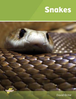 Snakes: Set 1