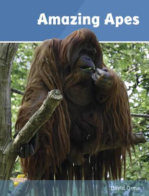 Amazing Apes : Set 2
