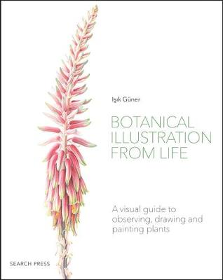 Picture of Botanical Illustration from Life : A Visual Guide to Observing, Drawing and Painting Plants