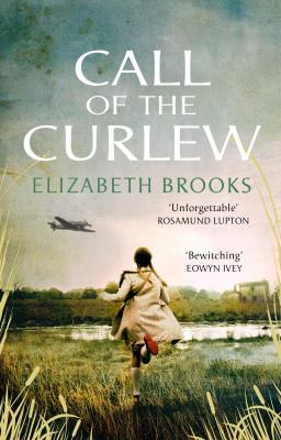 Picture of Call of the Curlew