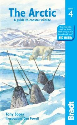 Picture of Arctic : A guide to coastal wildlife
