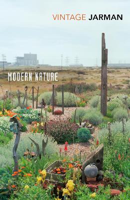 Picture of Modern Nature : The Journals of Derek Jarman