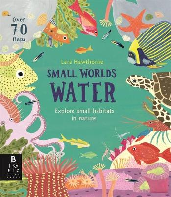 Small Worlds: Water