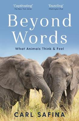 Picture of Beyond Words : What Animals Think and Feel
