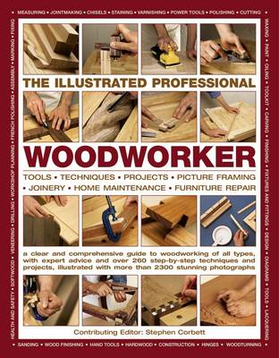 Picture of Illustrated Professional Woodworker