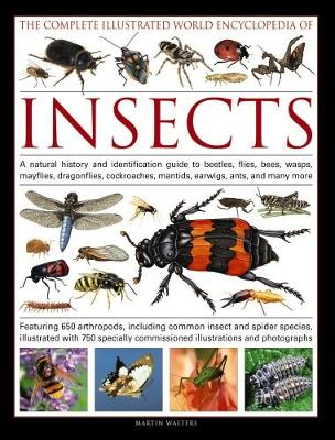 Picture of Complete Illustrated World Encyclopedia of Insects
