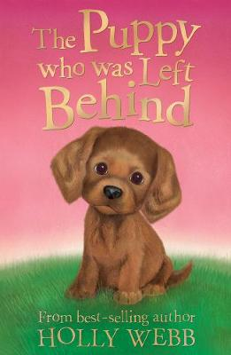 The Puppy who was Left Behind