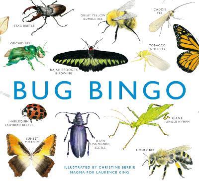 Picture of Bug Bingo
