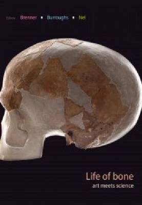 Picture of Life of Bone : The Taung Fossil and Thre South African Artists