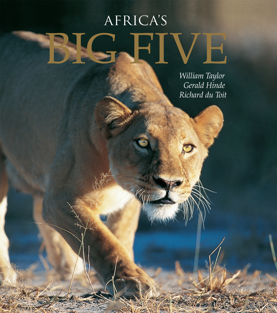 Picture of Africa's Big Five