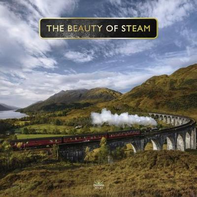 Picture of Beauty Of Steam