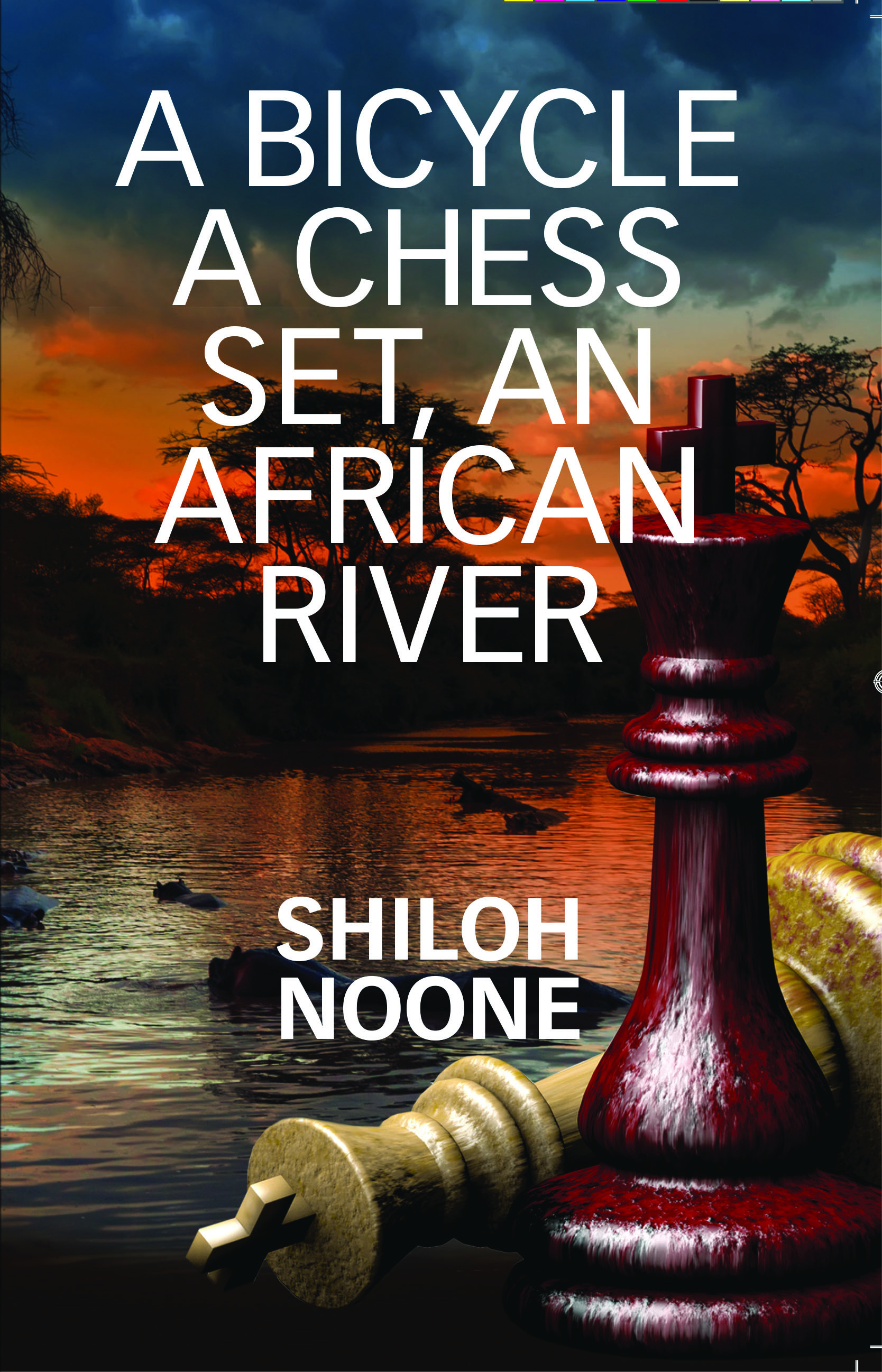 Picture of A Bicycle, A Chess Set, an African River