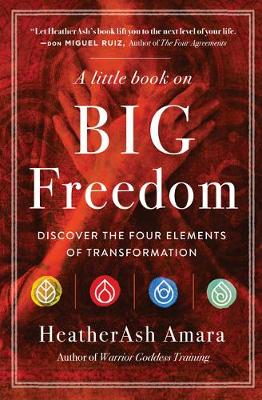 Picture of A Little Book on Big Freedom : Discover the Four Elements of Transformation
