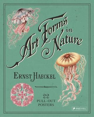 Picture of Ernst Haeckel: Art Forms in Nature: 22 Pull-Out Posters