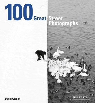 Picture of 100 Great Street Photographs